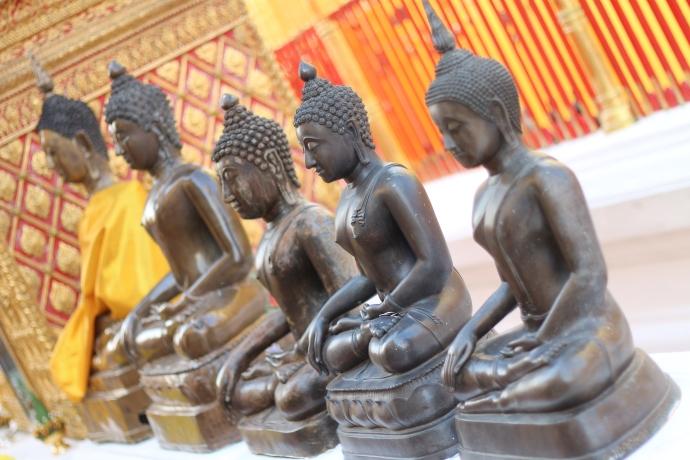 Row of thai buddahs